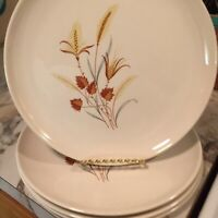 Taylor Smith Taylor Ever Yours Autumn Harvest Dinner Plates Set Of Four