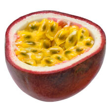 Passionfruit Improved Panama Red Seed Fist-Sized Fruit Subtropical Hybrid