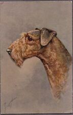 Vintage Artist Signed Airedale Terrier Dog Puppy Pup Old Pc Litho Postcard