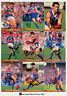 1994 Select AFL Personally Autographed Trading cards Team Set W. Bulldogs (13)
