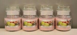 4 x  Pink Rhubarb & Pear Wickford & Co Mini Glass Jar Candles - Vegan