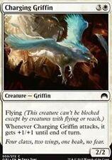 Charging Griffin X4 NM  Magic Origins  MTG Magic Cards White Common