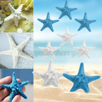 3Pcs Resin Starfish Tropical Ornament Beach Ocean Sea Star Wall Decor Home