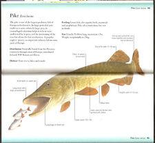 GREENHALGH BOOK FRESHWATER FISH OF BRITAIN & EUROPE POCKET GUIDE bargain NEW