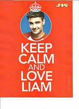 One Direction, Liam Payne, Selena Gomez, Double Sided Full Page Pinup