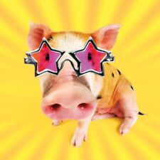 Disco Pig in Glasses Luxury Glitter Funny Birthday Greeting Card Animal Lovers