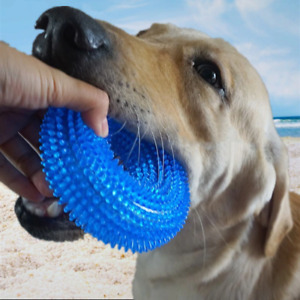 Round Pet Dog Bite Proof Chew Rubber Ball Thrower Squeak Funny Training Toy Tool