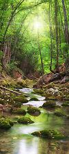 Türtapete Bach im Wald TT347 Größe 90x200cm Baum Wasser Tapete Tür Bäume grün