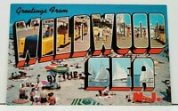 NJ WILDWOOD BY THE SEA Large Block Letter New Jersey Postcard I7