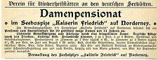 """Verwaltung SEEHOSPIZ """"KAISERIN FRIEDRICH"""" Norderney Historische Reklame von 1905"""