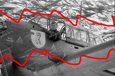 negativ-JU 87-Stuka-Sturzkampfgeschwader 1/StG 51-Köln-Staffel-wappen-47