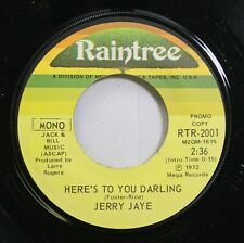 Rock 45 Jerry Jaye - Here'S To You Darling / Here'S To You Darling On Raintree