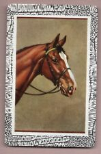 swap cards HORSES  playing card VINTAGE single US BLANK BACK