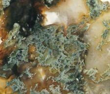 "Horse Canyon Moss Agate Slab Tehachapi California 3"" X 2.6"" X 1/4"" 80 Grams"