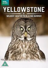 YELLOWSTONE Dal Selvaggio Inverno alla Fiammante Estate DVD in Inglese NEW .cp
