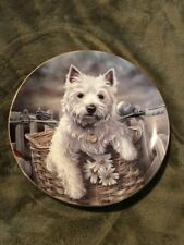 "Hitching A Ride West Highland Terriers by Paul Doyle The Danbury Mint 8"" Plate"