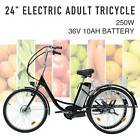 """Adult Electric Tricycle 24"""" 250W 36V 10AH Lithium Battery w/Basket <br/> 28 Mile Range🔥 Safe and Sturdy🔥 Ultimate Comfort"""