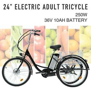 "Adult Electric Tricycle 24"" 250W 36V 10AH Lithium Battery w/Basket"