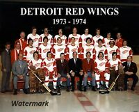 NHL 1973 - 74 Detroit red Wings Team Photo Color 8 X 10 Photo Picture