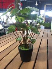 PEPEROMIA CAPER Artificial  Plant Fake Grass Indoor Outdoor With Pot