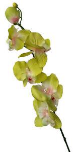 Orchidee Phalenopsis künstlich- Classic Eco - Zweig 56cm Gelb-grün