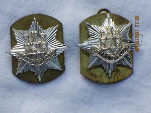 Royal Anglian Regiment, Collar Badges, Kragenabzeichen,mit Ösen