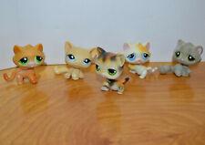 LITTLEST PET SHOP CAT MINI FIGURE LOT HASBRO LPS AUTHENTIC CUTE TOYS C1
