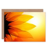 Dt Bright Sunflower Petals Birthday Blank Greeting Card With Envelope