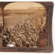 World War I Stereoview Russian Troops Bristling Forest Bayonets Keystone View Co