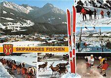 BG12575 wintersportplatz fischen oberallgau horse cerf deer types ski    germany
