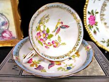 TUSCAN tea cup and saucer painted floral & bird pattern teacup blue bands