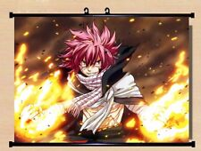 Anime Fairy Tail Natsu Cosplay Home Decor Poster Wall Scroll 40*55cm#DD-H33