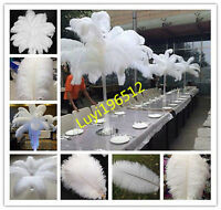 Gorgeous 10-200pcs White High Quality Natural OSTRICH FEATHERS 6-30inch/15-75cm