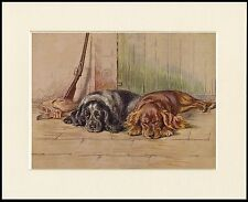 COCKER SPANIEL DOGS AND GUN DOG SHOOTING PRINT MOUNTED READY TO FRAME