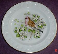 Royal Worcester Pottery Dinner Plates