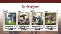 Chad Mushrooms Stamps 2020 MNH Fungi Mushroom Nature 4v M/S