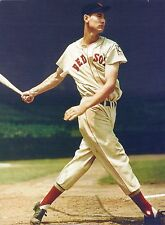 THE GREAT BOSTON RED SOX TED WILLIAMS THE SPLENDID SPLINTER  PERFECT SWING