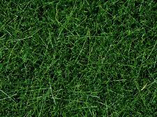 NOCH 07094 Escala H0, n, Hierba salvaje, verde oscuro 100g, 100g =