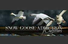 Spring Snow Goose Hunt: Ar, Mo, Sd Fully Guided