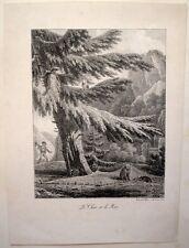 Lithographie originale de Lecomte, Le Chat et le Rat