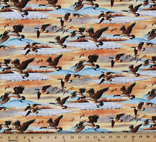 Cotton Duck Duck Goose! Canadian Geese in Flight Fabric Print BTY D487.05