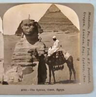 Stereoview Keystone View Co 9781 The Sphinx Gizeh Egypt Man On Camel Pyramid (O)
