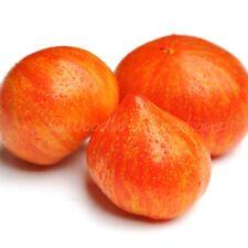 Cœur Rose Graines de TOMATE batyanya organically Grown Heirloom non OGM