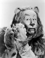 Wizard of Oz  Cowardly Lion  8 x 10 Photo Picture #b1