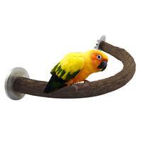 LN_ AM_ Parrot Scratching Chewing Stick Natural Wood U-shape Bird Stand Perch