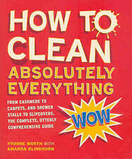 Very Good, How to Clean Absolutely Everything, Yvonne Worth, Amanda Blinkhorn, B