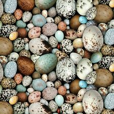 Fabric Wild Bird Eggs Real Elizabeth Studios Full Cotton 1/4 Yard