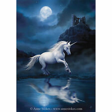 Moonlight Unicorn Anne Stokes Wall Plaque White Reflection Fantasy Art Canvas