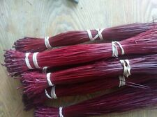 Long leaf pine needles Dyed Red