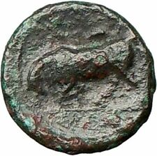 SYRACUSE Sicily Agathocles KORE Underworld queen BULL Ancient Greek Coin i24857